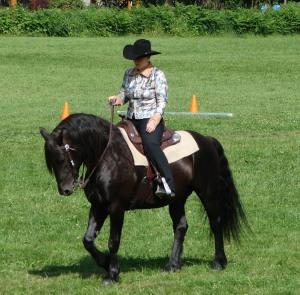 Julie Hickie of Cache Canadians in Rimbey, Alberta and her stallion Phenom